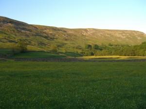 evening sun and view of a hillside